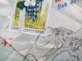 la busta di Picasso olio su tela 50x70